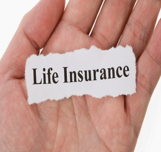 Top 10 Best Permanent Life Insurance Companies in USA